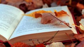 My October ReadingWrap-Up