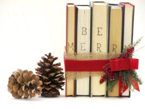 My November ReadingWrap-Up