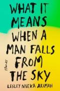 falls from sky